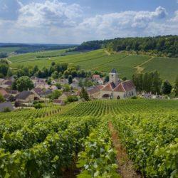 Cote-des-Bars-Viviers-sur-Artaut-village-vignoble-vert-cDidier-Guy